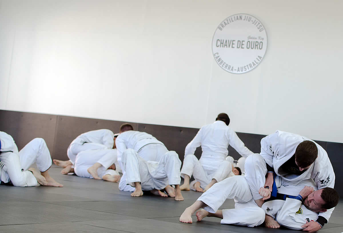 brazilian jiu jitsu adults canberra